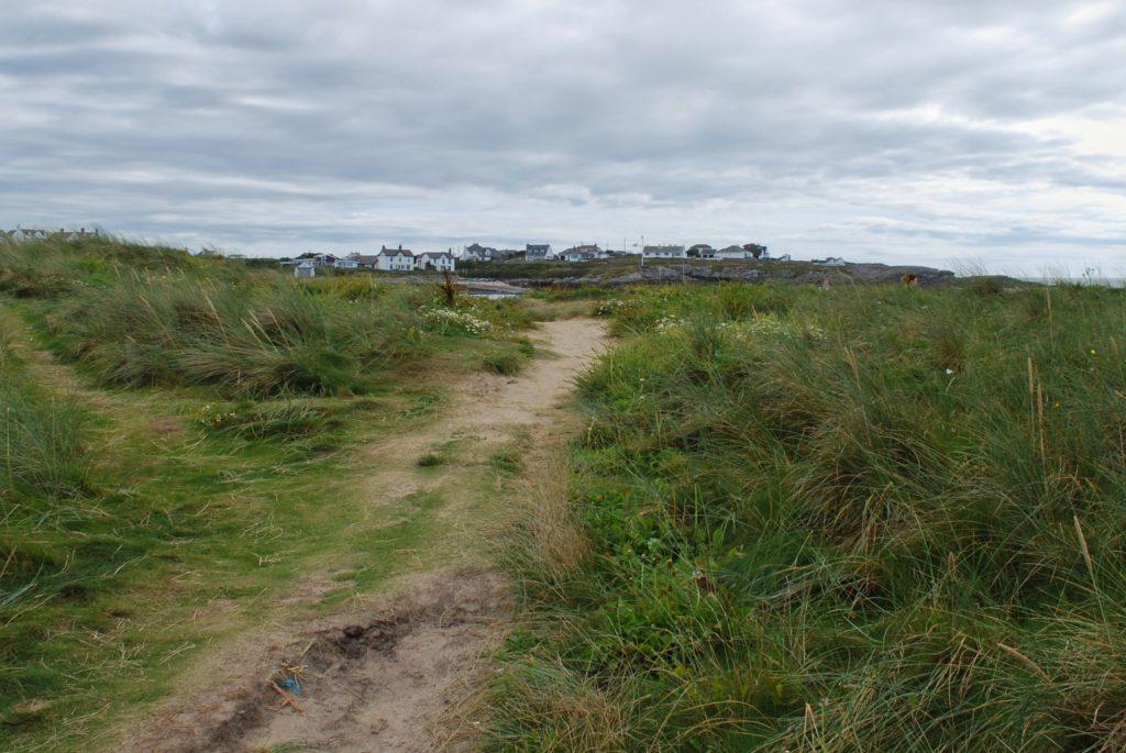 La campagna sull' isola di Anglesey in Galles