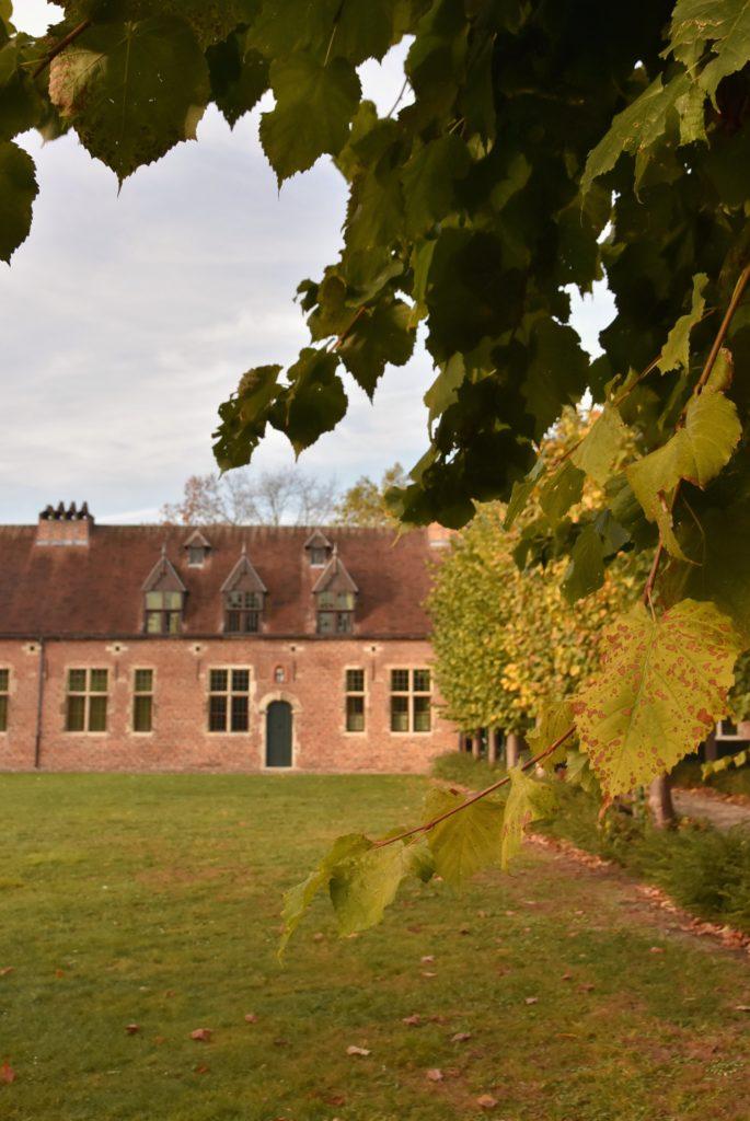 Il begijnhof di Leuven